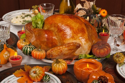 HOW TO PROTECT YOUR SINK, AND SAVE THANKSGIVING